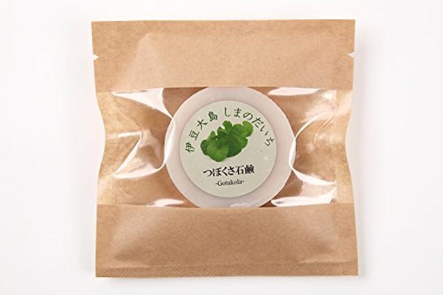 ラテン威する柔らかいツボクサ(ゴツコラ)の石鹸(伊豆大島産)