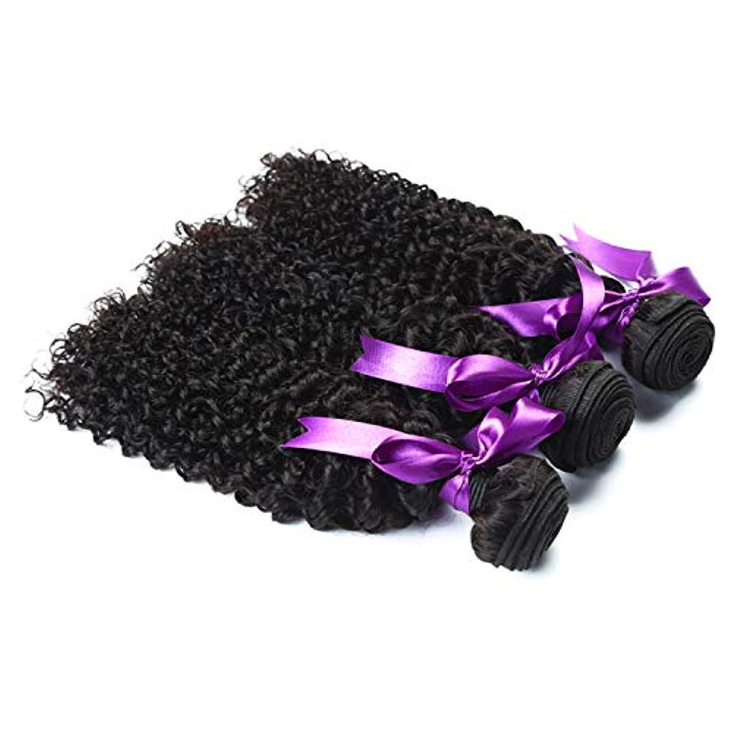 貯水池ながらコンドームかつら マレーシアの変態巻き毛3束お得な価格非Remy人間の髪織りエクステンションナチュラルブラック人間の髪の毛のかつら (Length : 8 10 12)