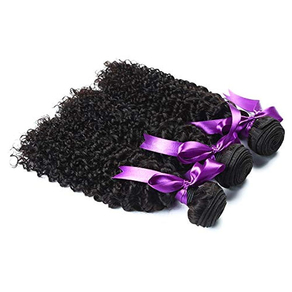 結婚した真っ逆さま伝説かつら マレーシアの変態巻き毛3束お得な価格非Remy人間の髪織りエクステンションナチュラルブラック人間の髪の毛のかつら (Length : 8 10 12)