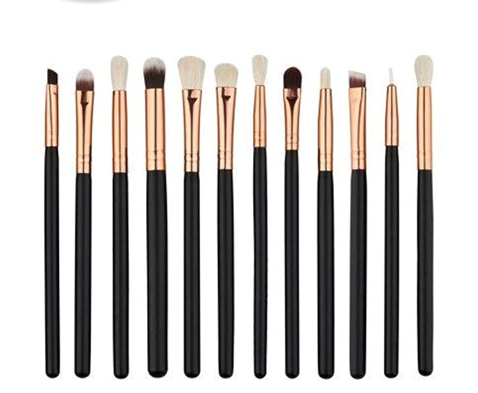 不十分苦味割るアイシャドウブラシセット12ピース化粧アイブラシアイシャドウブレンドブラシ眉毛アイライナーリップブラシ美容ブラシ、ギフトに最適 (Color : Black)