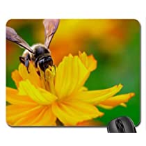 cosmos nectar :D Mouse Pad, Mousepad (Flowers Mouse Pad) by Pearl Mousepad [並行輸入品]