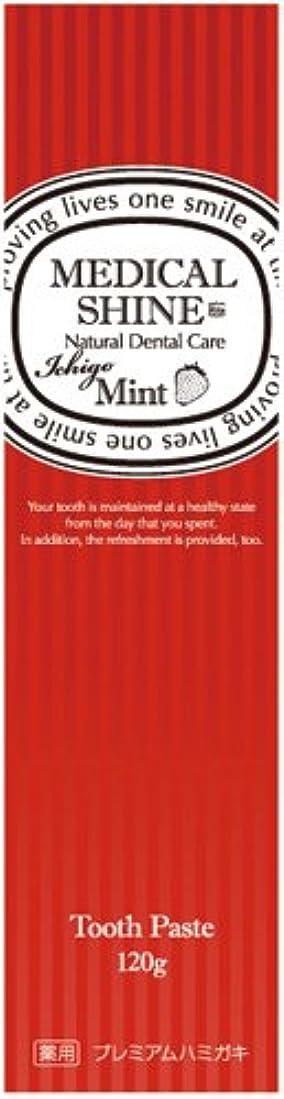 十分ではない非効率的な侮辱メディカルシャインリッツ イチゴ 120g