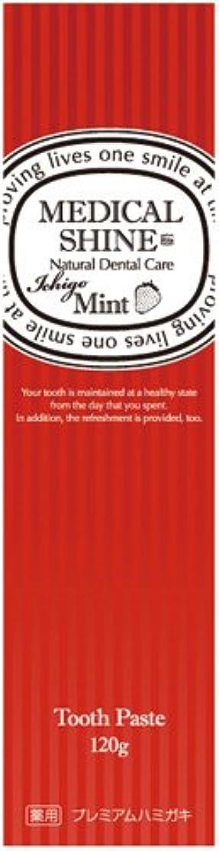 クラックポット予防接種するエステートメディカルシャインリッツ イチゴ 120g