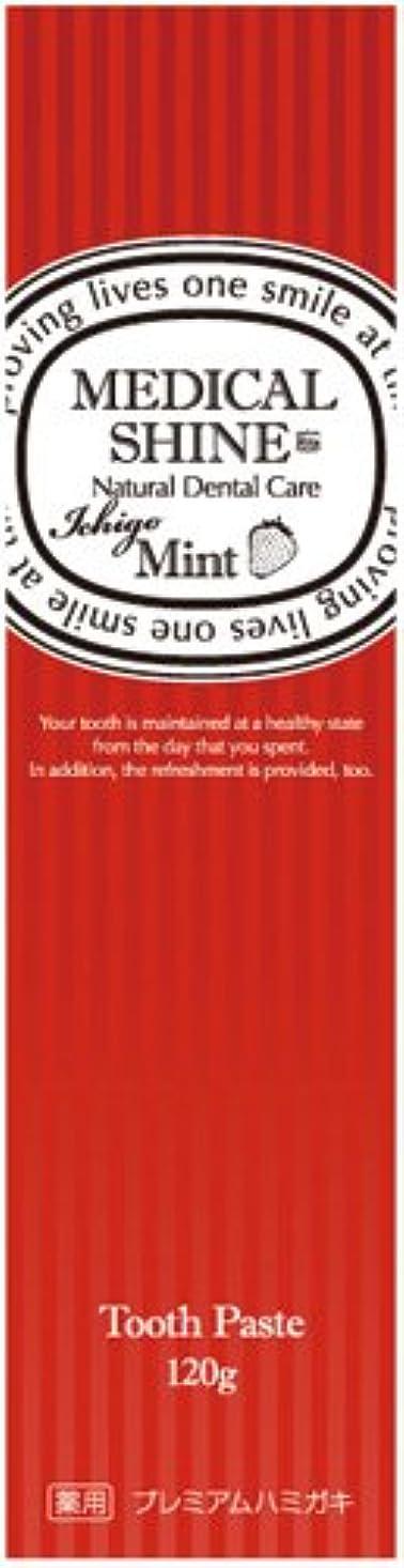 セーブポールレタスメディカルシャインリッツ イチゴ 120g