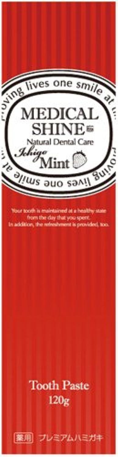 既に枯れる封筒メディカルシャインリッツ イチゴ 120g