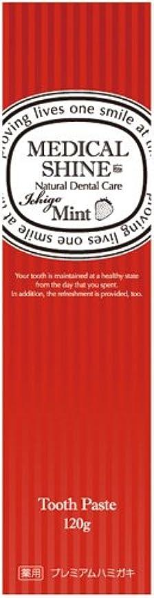 宣伝サスペンド機会メディカルシャインリッツ イチゴ 120g