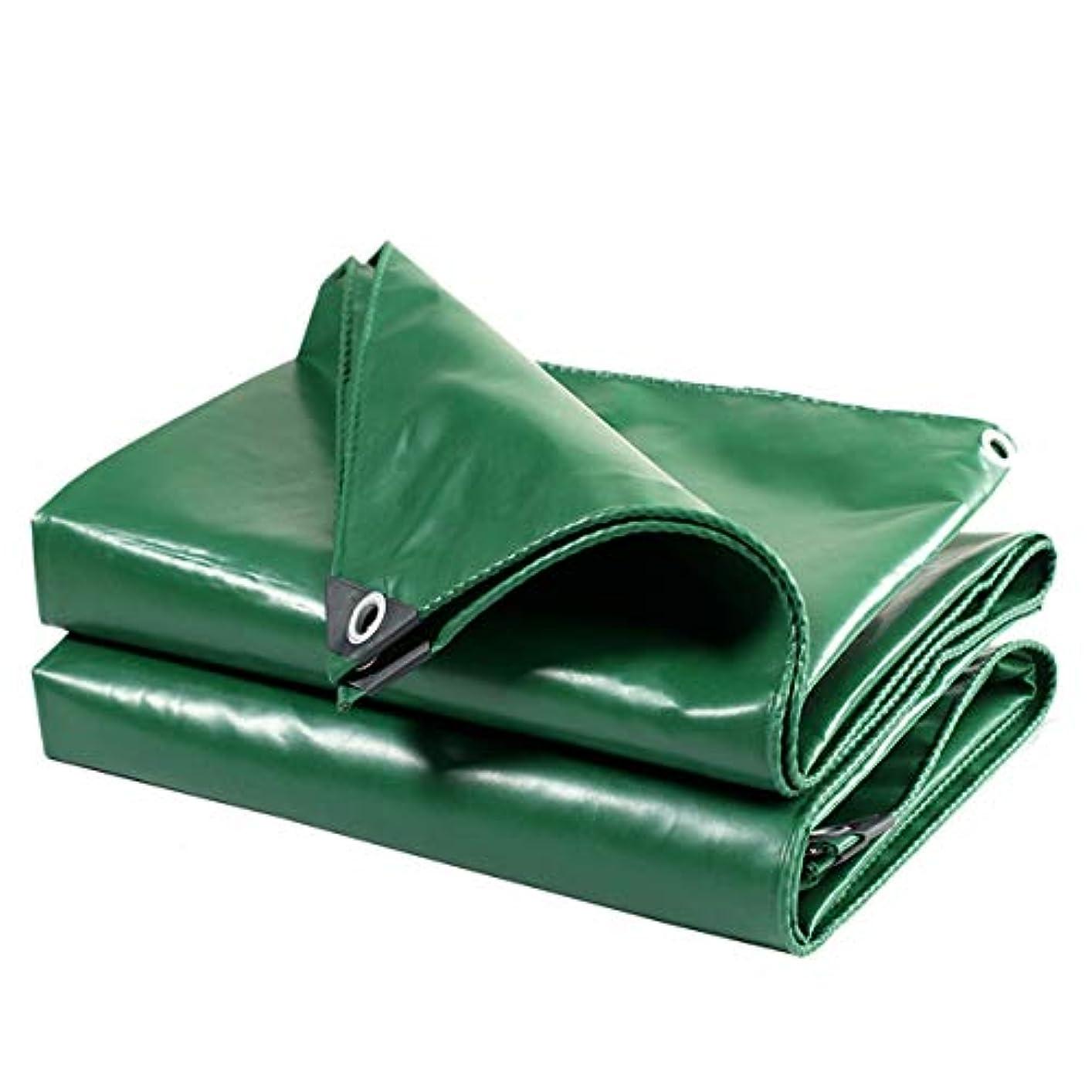 些細なプレゼントビルマグリーン0.42 mm防水日焼け止め防水シートターポリンターポリン屋外シェードマルチサイズキャノピー布 (Size : 3*3M)