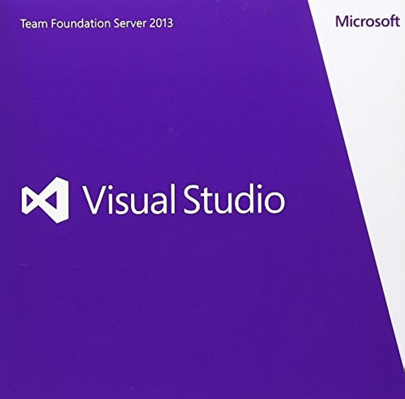 抵抗するがっかりしたフィヨルドMicrosoft Visual Studio Team Foundation Server 2013英語版