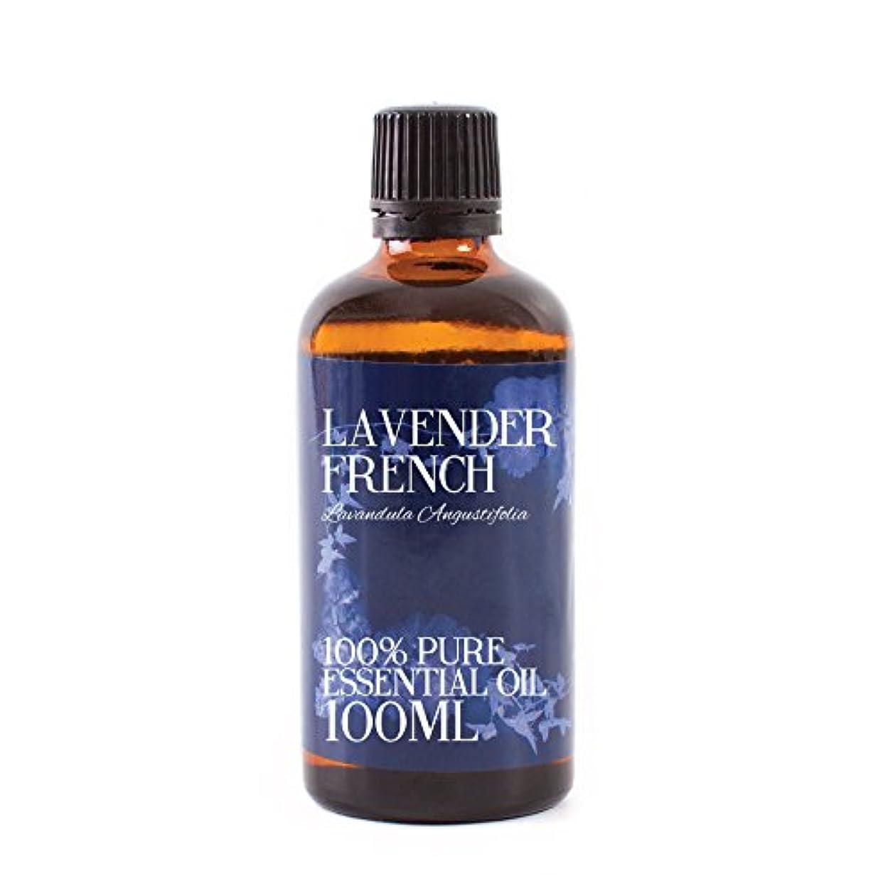 特徴電気的動かすMystic Moments | Lavender French Essential Oil - 100ml - 100% Pure
