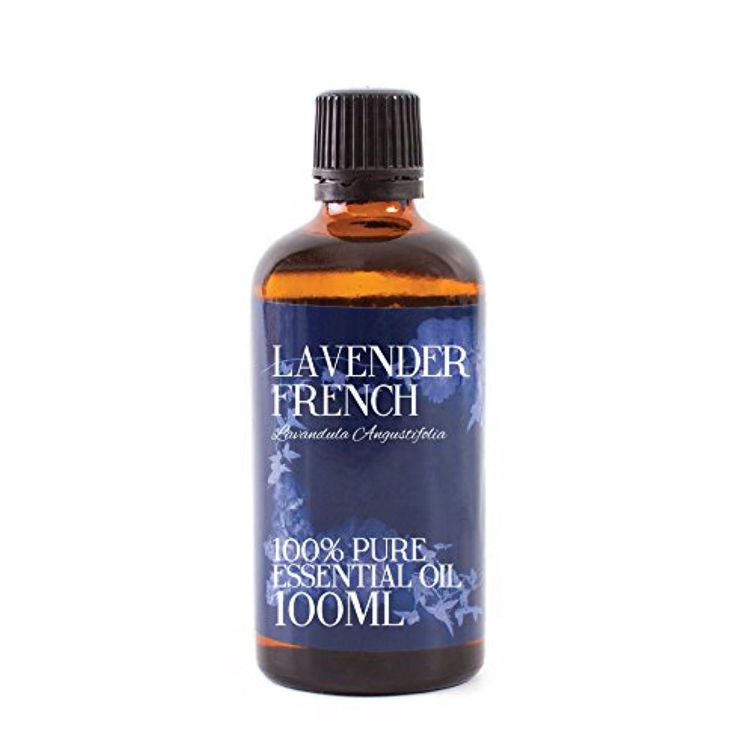 力ベギンきらめきMystic Moments   Lavender French Essential Oil - 100ml - 100% Pure