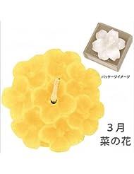カメヤマキャンドル( kameyama candle ) 花づくし(植物性) 菜の花 「 菜の花(3月) 」 キャンドル