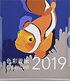 2019卓上カレンダー 色彩遊泳-思わぬ色彩をまとう海のいきものたち