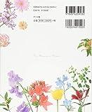 美しい花言葉・花図鑑‐彩りと物語を楽しむ‐ 画像