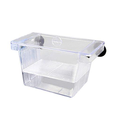 多機能産卵箱 繁殖隔離ボックス 孵化機 インキュベータ 水槽 孵化 産卵器 水族館アクセサリー 水族館熱帯魚用 ダブルフローリング