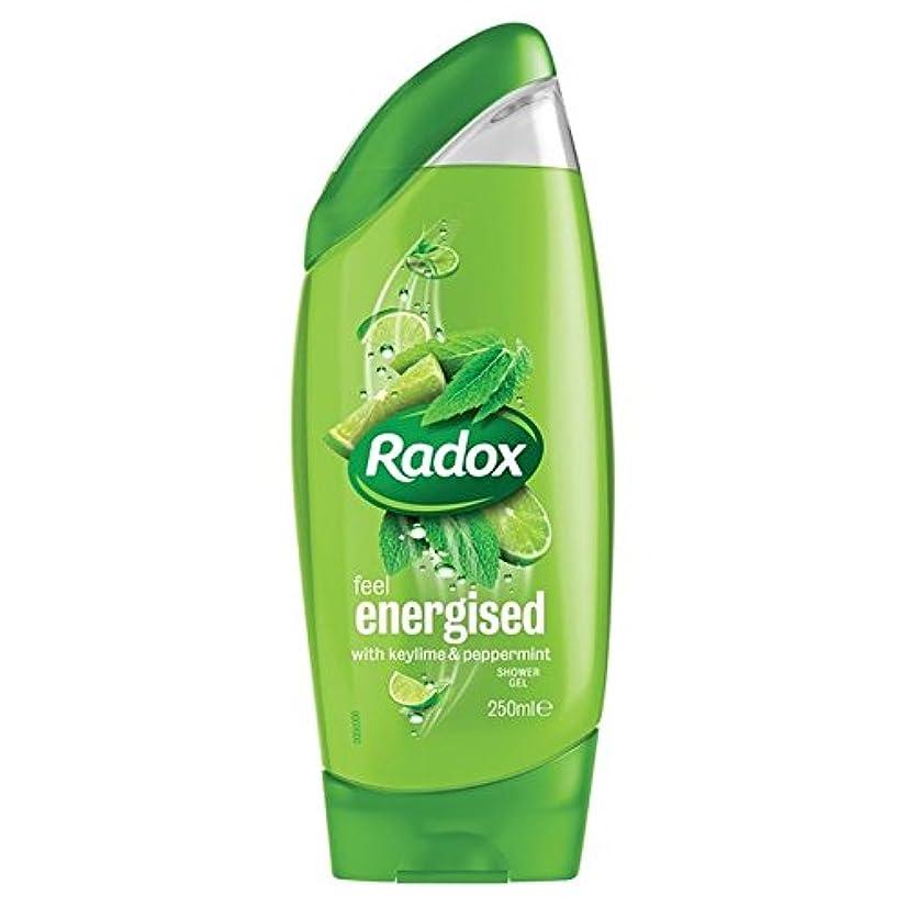 宝石ボンド振動させるキーライム&ペパーミントは、シャワージェル250ミリリットルを活性化 x2 - Radox Key Lime & Peppermint Energise Shower Gel 250ml (Pack of 2) [並行輸入品]