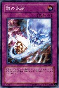 遊戯王カード 【 魂の氷結 】 EE1-JP258-N 《エキスパートエディション1》