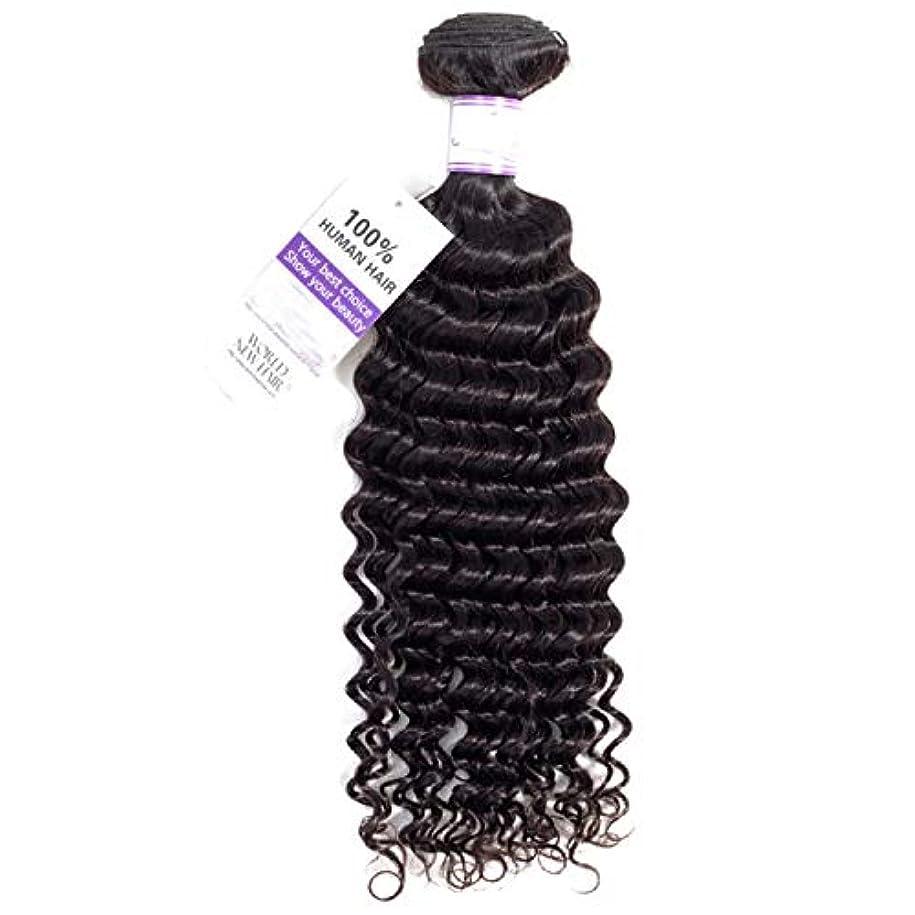 主張するセッティングいたずらブラジルのディープウェーブヘア織りバンドル100%人毛織りナチュラルカラー非レミー髪1本 かつら (Stretched Length : 12inches)