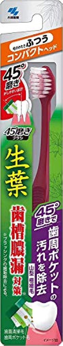 愛撫滑り台ハドル小林製薬 生葉45°磨きブラシ コンパクト 歯周ポケットの汚れを除去 ふつう