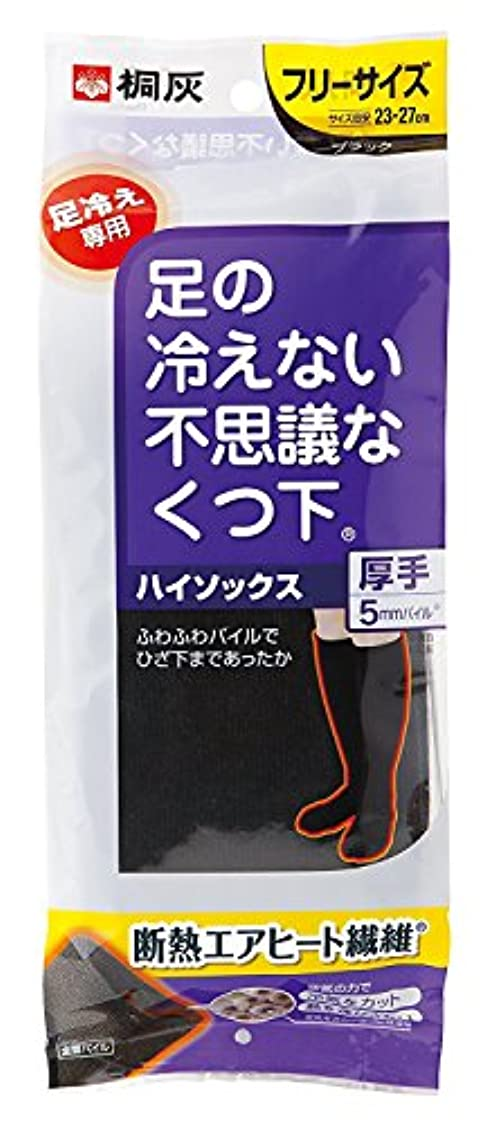 散らすループ空の桐灰化学 足の冷えない不思議なくつ下 ハイソックス 厚手 足冷え専用 フリーサイズ 黒色 1足分(2個入)
