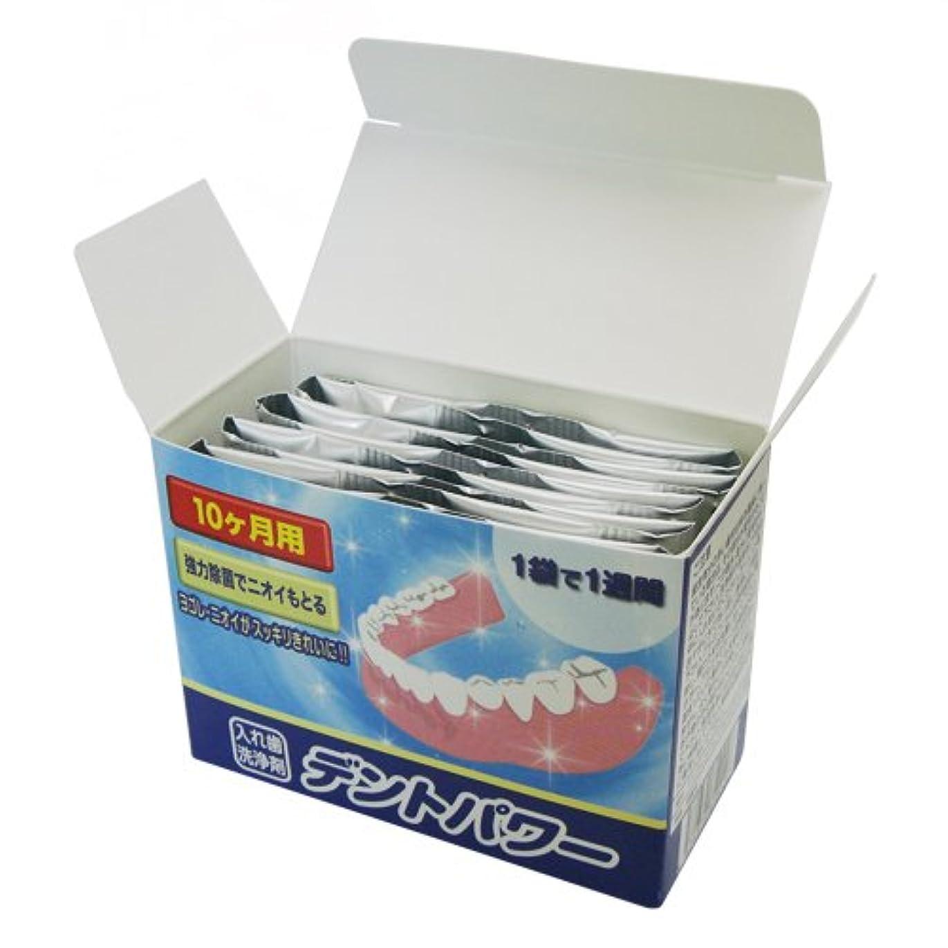 委任カビ剃るデントパワー 入れ歯洗浄剤 10ヵ月用(専用ケース無し)
