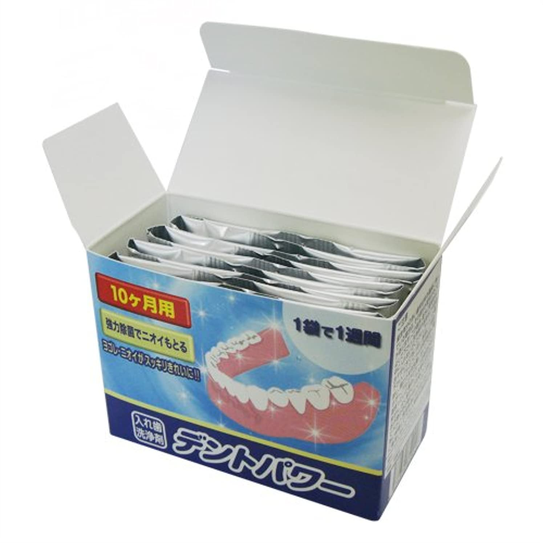 道最小読者デントパワー 入れ歯洗浄剤 10ヵ月用(専用ケース無し)