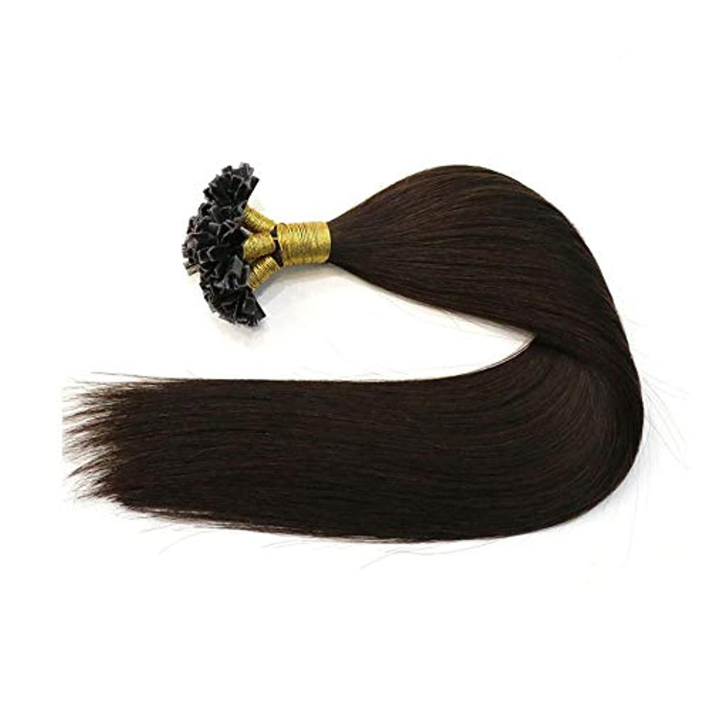 悲しむ詩人蒸留WASAIO ナチュラルヘアエクステンションクリップ裏地なし髪型ブラックFusionの人間の髪の拡張機能レミーブラジルの髪の連続 (色 : 黒, サイズ : 14 inch)