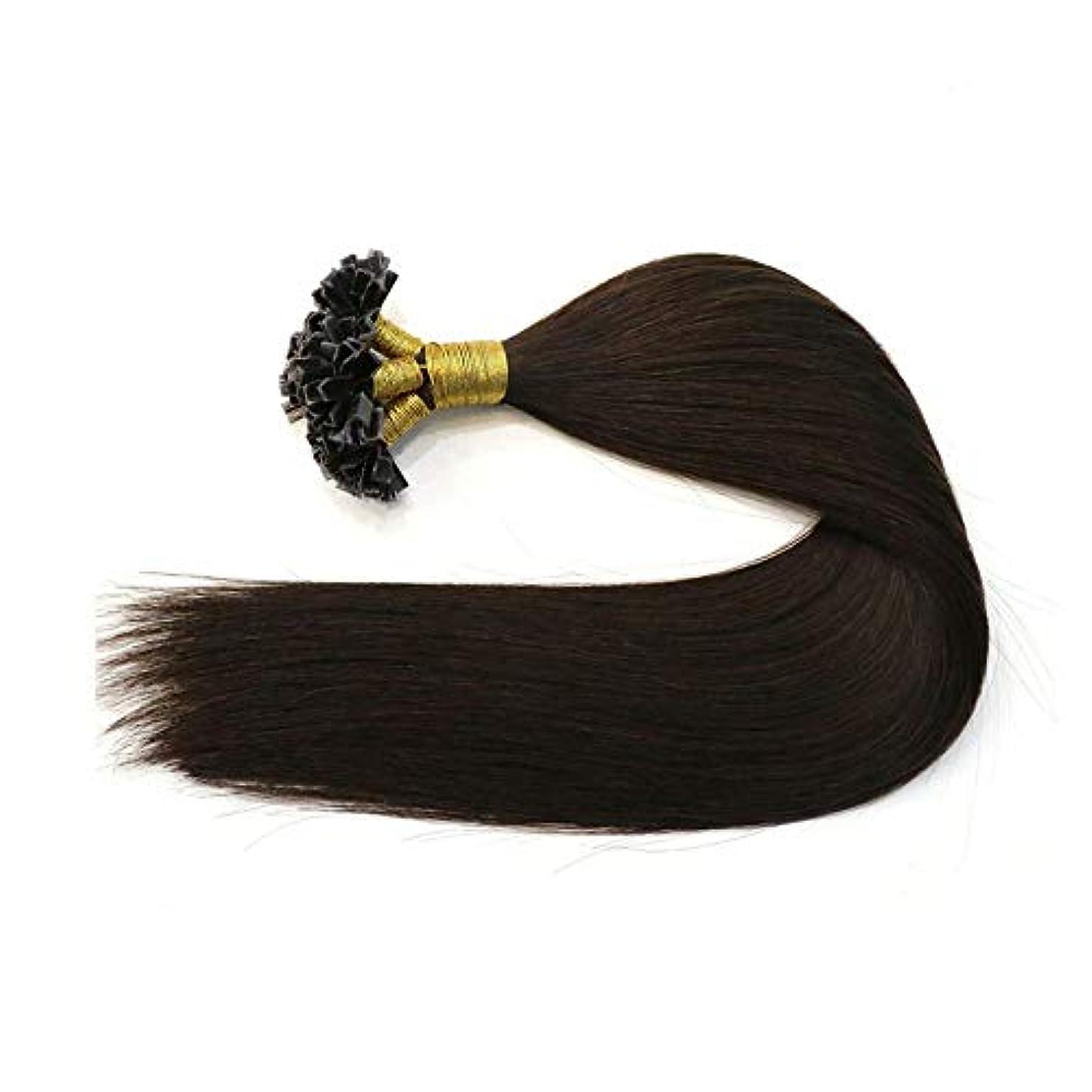 ピクニック学部長ラブJULYTER ブラックナノチップフュージョン人間の髪の毛の拡張子レミーブラジルの髪の毛本能的なナノリング髪 (色 : 黒, サイズ : 22 inch)
