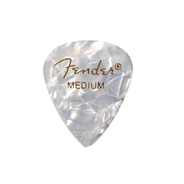 Fender フェンダー ピック PICKPAC...の商品画像