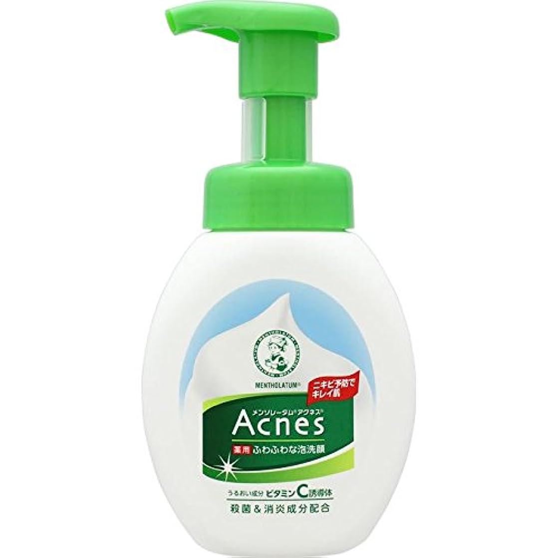 【医薬部外品】メンソレータム アクネス ニキビ予防薬用ふわふわ泡洗顔 160mL