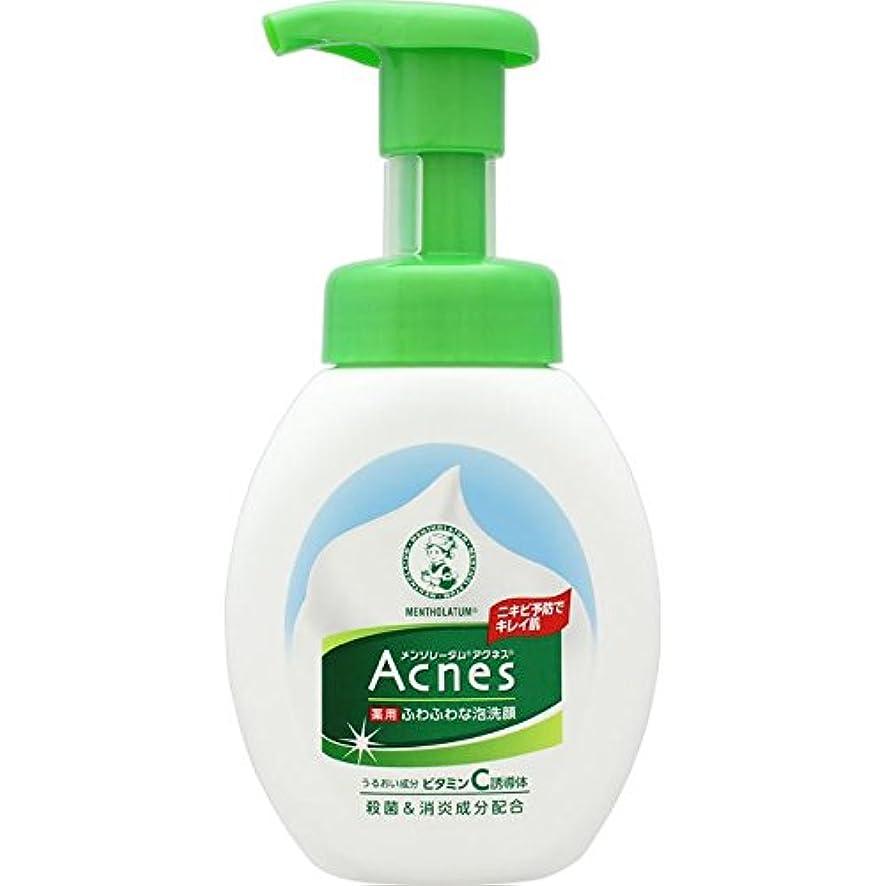納得させる植物学者本能Acnes(アクネス) 薬用ふわふわな泡洗顔 160mL【医薬部外品】