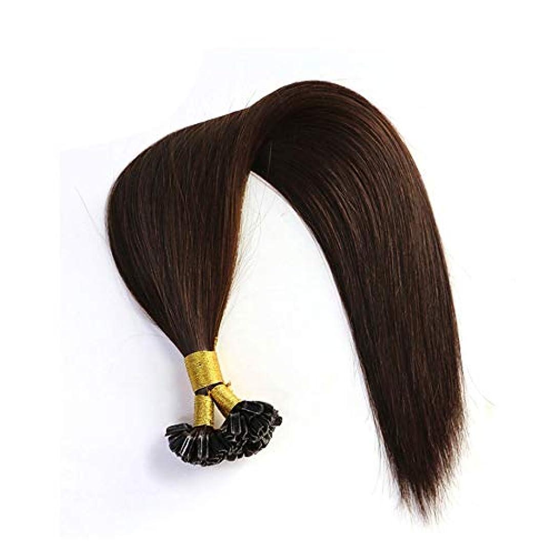 レザー水平チケットWASAIO 髪の拡張子本物のバージン人毛20