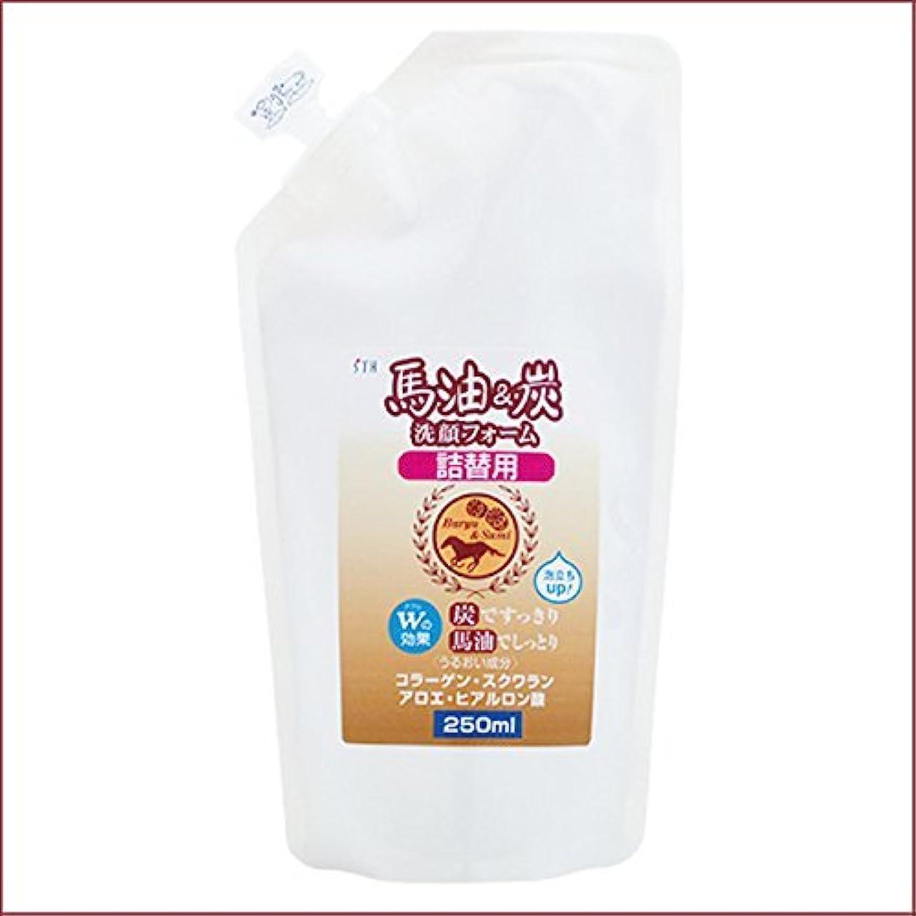 簡略化する司書暖かく馬油&炭 洗顔フォーム 詰替用 250mL