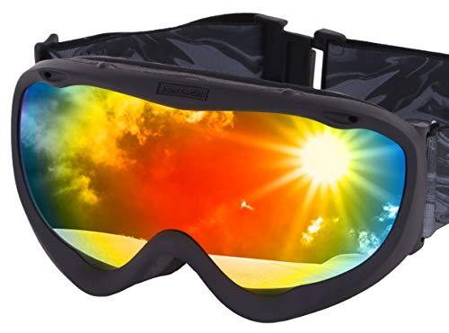 PONTAPES(ポンタぺス) スノーボード ゴーグル 曇り止め ダブルレンズ 男女兼用 簡単脱着 UVカット 99% ヘルメット対応 日本企画品 全6色 PNP-891