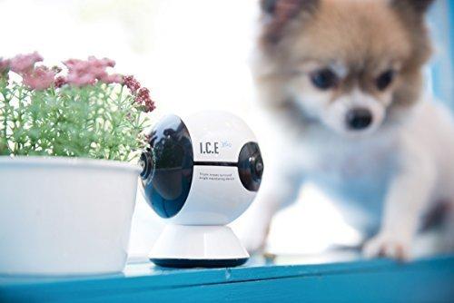 【スマホでいつでもペットと一緒】ペットを驚かせずスマホで全方位映像がくるくる見渡せる可愛いWi -Fi無音ネットワーク監視カメラ 「ICE360」(ワンちゃん、猫ちゃんから、お子様、介護の見守りカメラに最適。)