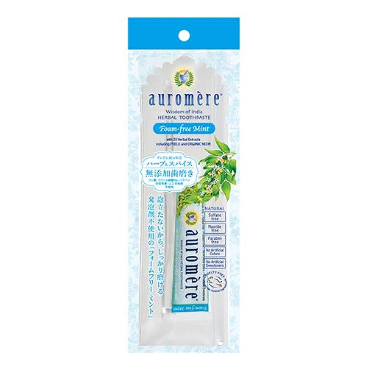 睡眠マウントバンク食物オーロメア 歯磨き粉 フォームフリーミント トラベルセット 20g