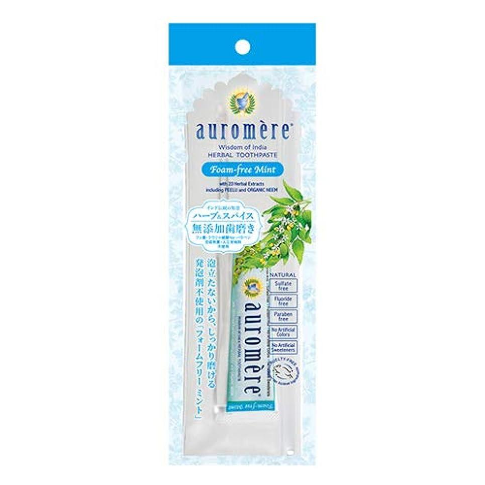 適応作り上げる順応性のあるオーロメア 歯磨き粉 フォームフリーミント トラベルセット 20g