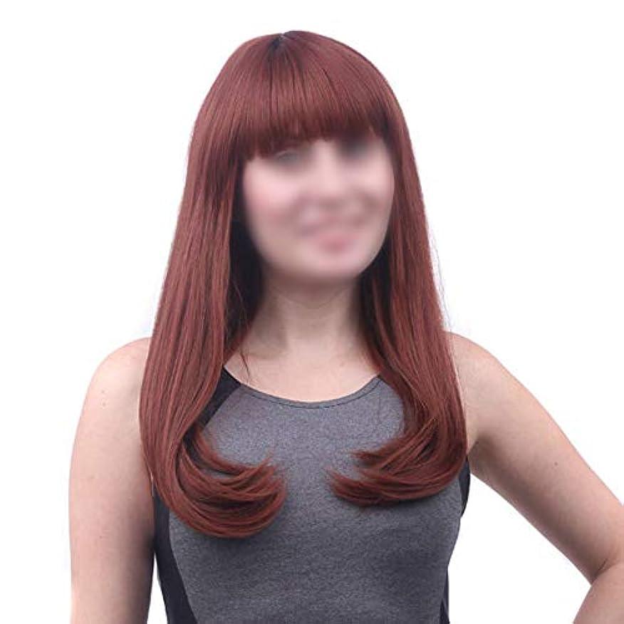 ネックレット学校いらいらさせるWASAIO 髪型付き合成かつらロングシルキーストレートナチュラルルックアクセサリースタイル交換用ウィッグ女性用、コスプレ衣装 (色 : ブラウン, サイズ : 55cm)