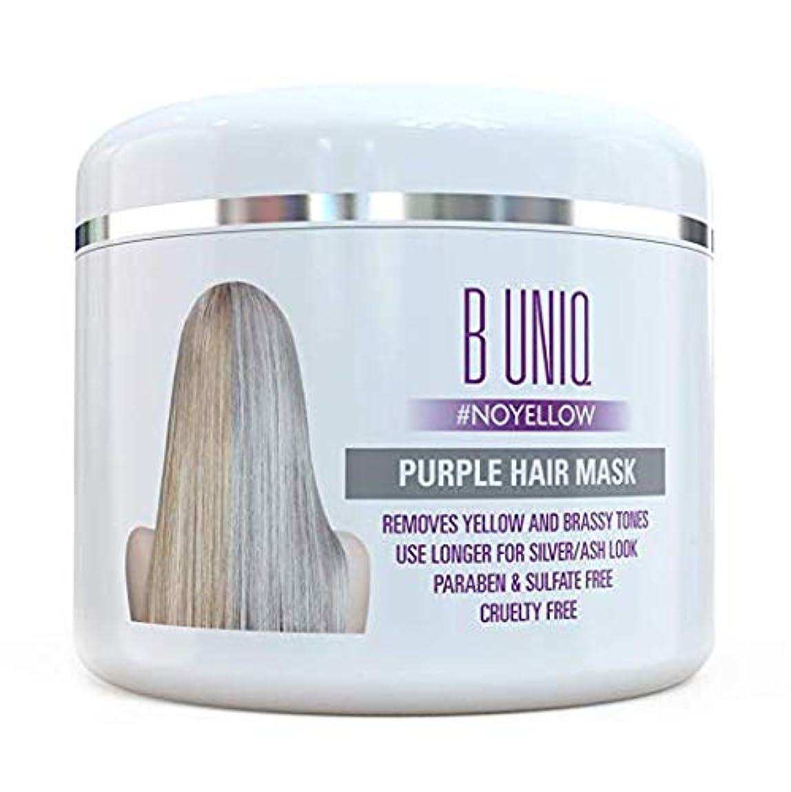 紫 ヘアマスク ヘアトナー Purple Hair Mask For Blonde, Platinum & Silver Hair - Banish Yellow Hues: Blue Masque to Reduce...