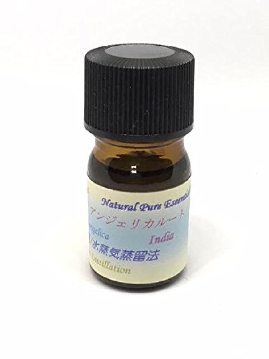 計算ペインギリック綺麗なアンジェリカルート精油 5ml ピュアエッセンシャルオイル (ハーブ系)