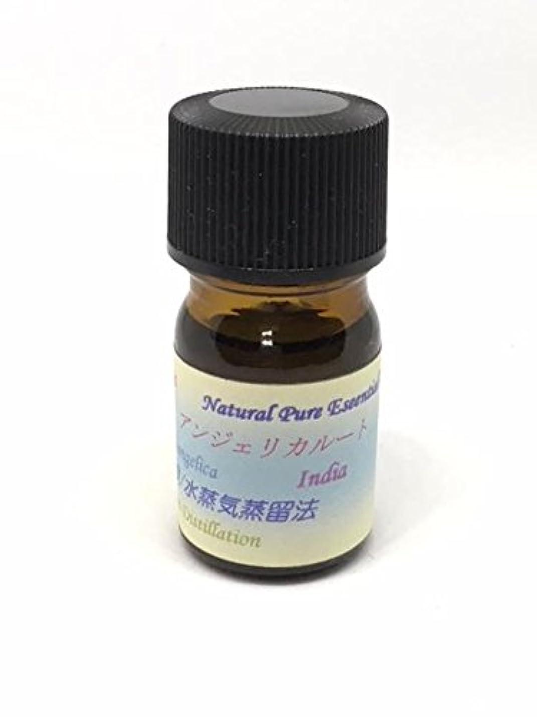 染料開拓者着替えるアンジェリカルート精油 5ml ピュアエッセンシャルオイル (ハーブ系)