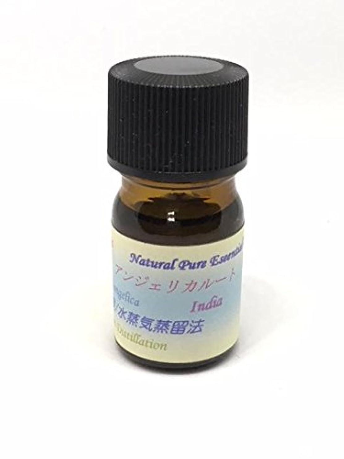 迷惑辛な化学者アンジェリカルート精油 5ml ピュアエッセンシャルオイル (ハーブ系)