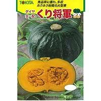 かぼちゃ 種 【 くり将軍 】 種子 小袋(約7粒)