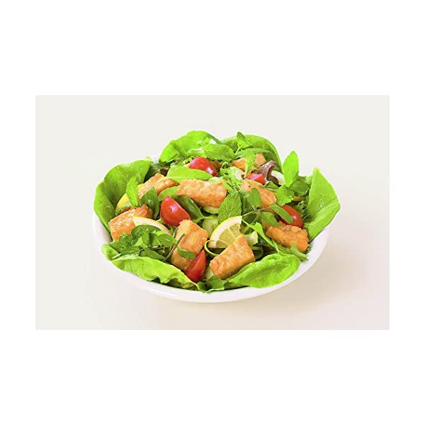 ヤマク食品 テンペ100g×10袋の紹介画像3