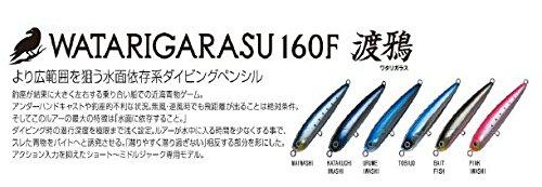 [해외]渡鴉 160F 날치/Watarase 160 F Flying flying