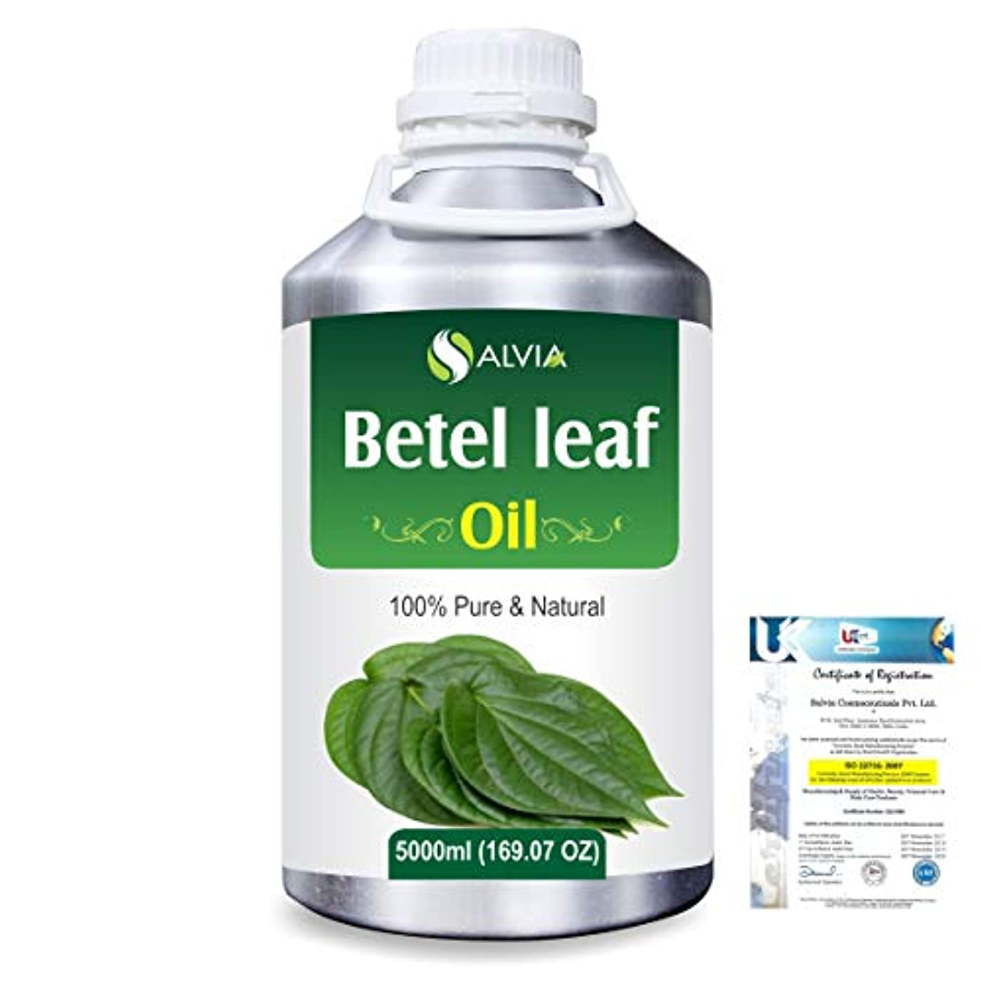 宿泊投げる抑圧Betel Leaf (Piper Betle) 100% Natural Pure Essential Oil 5000ml/169fl.oz.