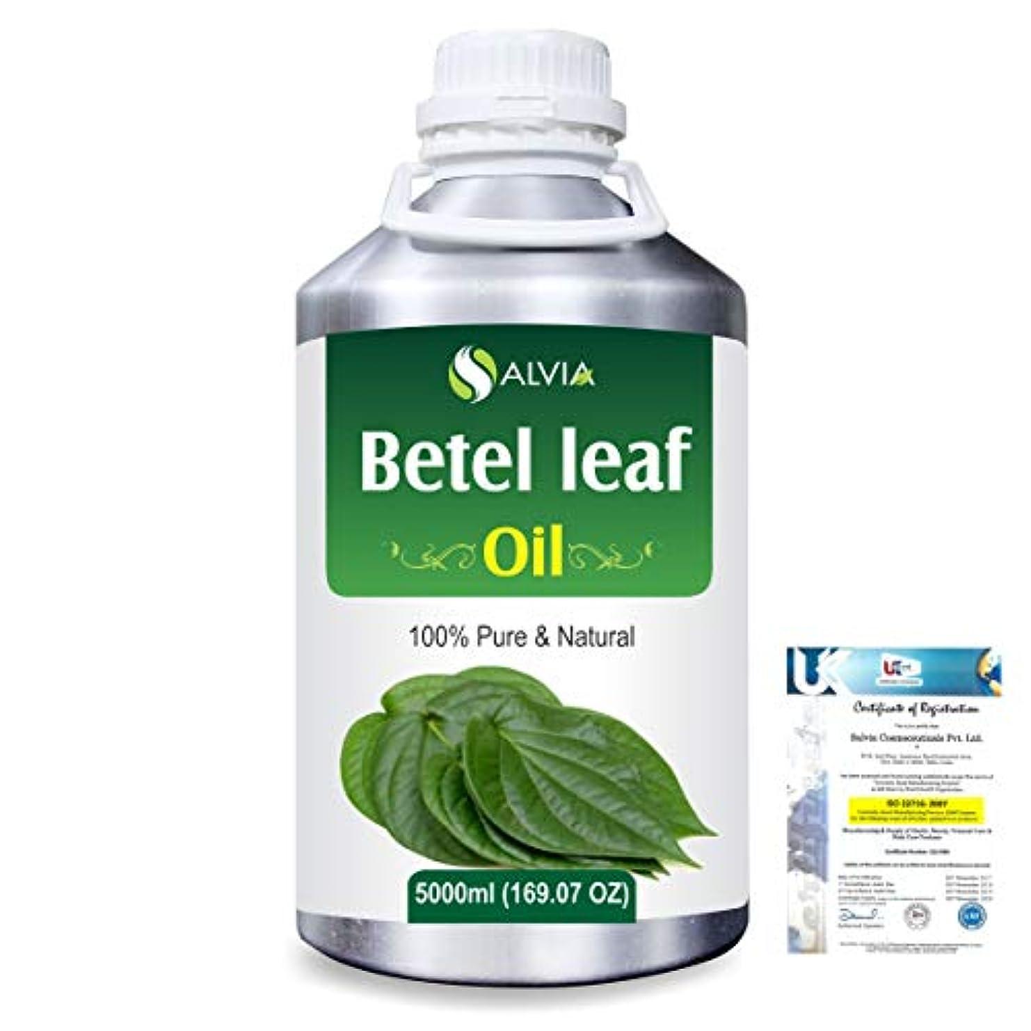 無駄なチャート歯痛Betel Leaf (Piper Betle) 100% Natural Pure Essential Oil 5000ml/169fl.oz.