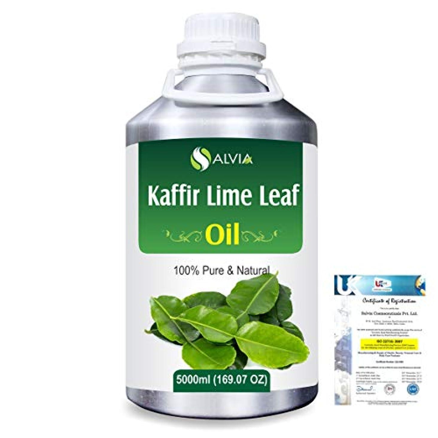 ペグどんよりした関数Kaffir Lime Leaf (Citrus Hystrix) 100% Natural Pure Essential Oil 5000ml/169fl.oz.