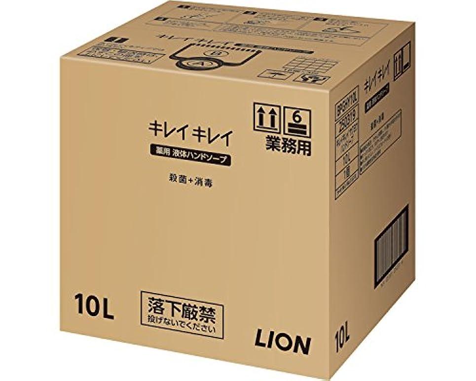 彼女の自殺資本主義キレイキレイ薬用ハンドソープ 10L (ライオンハイジーン) (清拭小物)