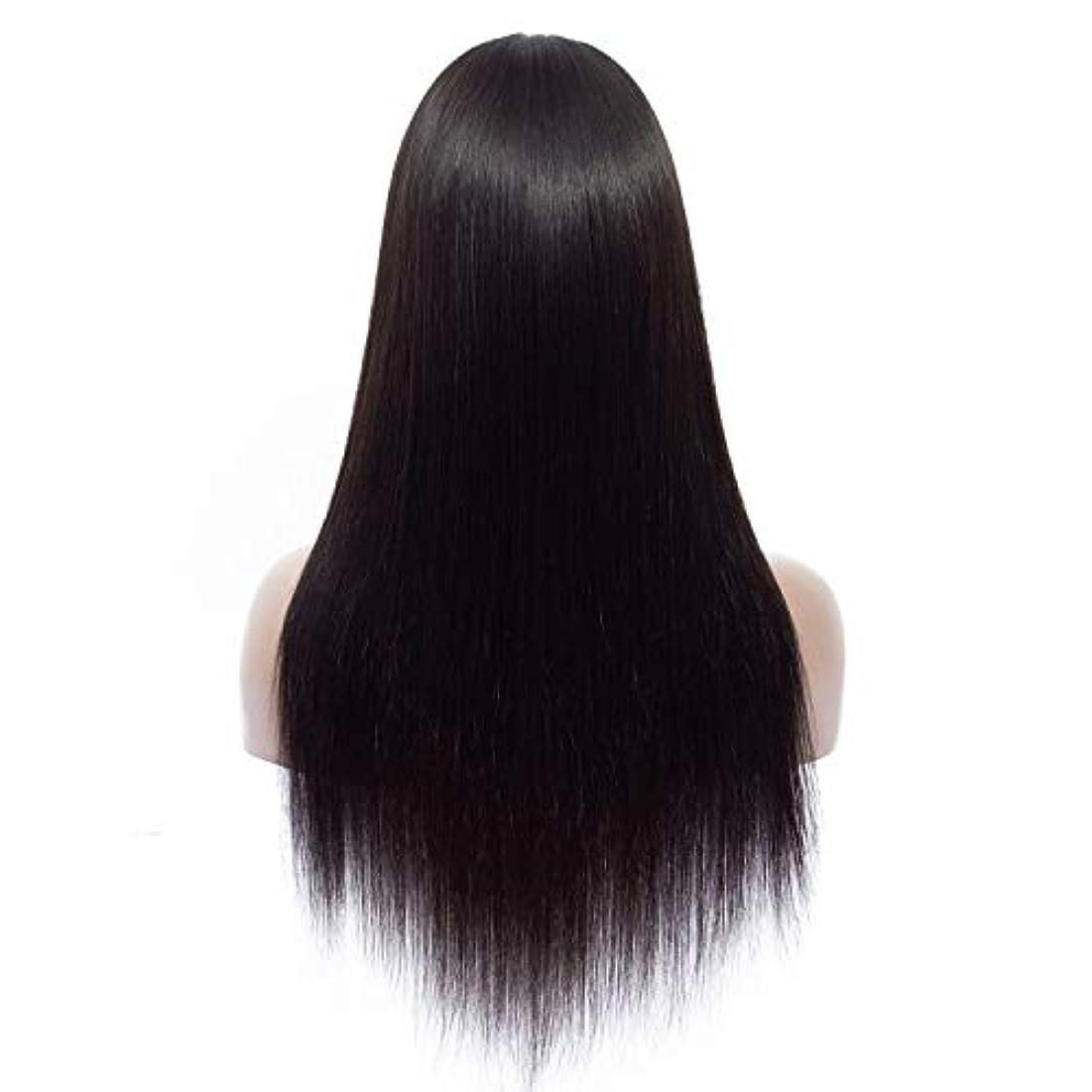 SRY-Wigファッション ヨーロッパとアメリカの黒の長い髪耐熱ストレートコスプレかつらコスプレ合成髪ウィッグ (Color : ブラック, Size : 16inch)