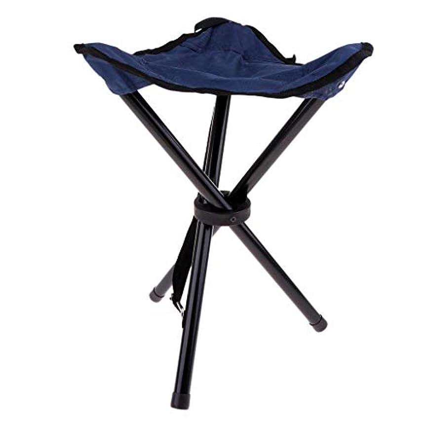 ありがたい争う短命DYNWAVE 折りたたみスツール 椅子 折り畳み式 三脚スツール 釣り椅子